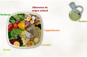 alimentacion11
