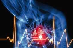 Las enfermedades cardiovasculares int1