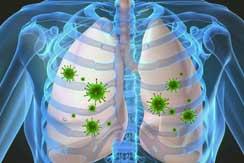 Que es el virus H7N9 int2
