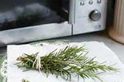 Se puede comer sano usando el horno microondas int1