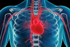 3 Historia familiar y enfermedades del corazon int1
