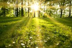 luz-solar-i