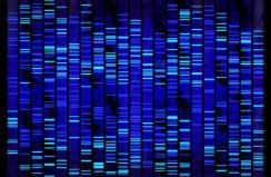 genomica-i