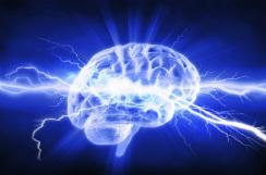 cerebro-I