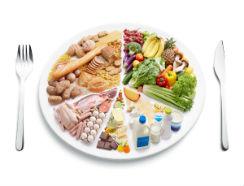 cinco grupos alimentos-I