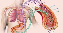 Tu diabetes debes cuidar, porque tus órganos puedes dañar.2