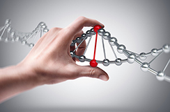 edicion-genomica-CRISPR-2015-2