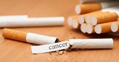 productos-toxicos-cancer-2
