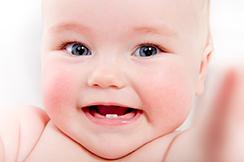 denticion-bebes-2