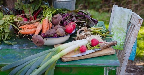 dieta-vegetales