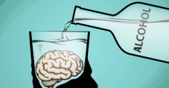 Alcohol efectos cerebro
