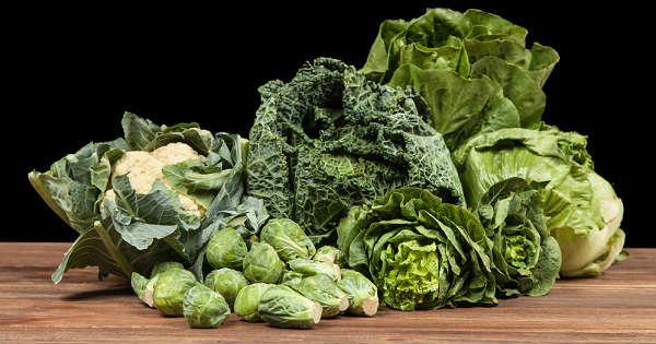 Ventajas de comer verduras de hoja verde para el cerebro de adultos mayores